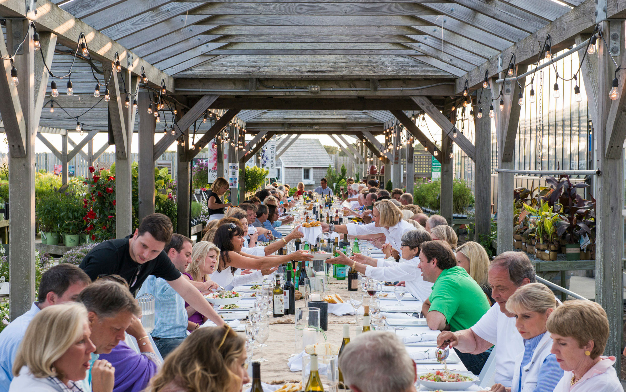 Farm to Table Dinner Nantucket