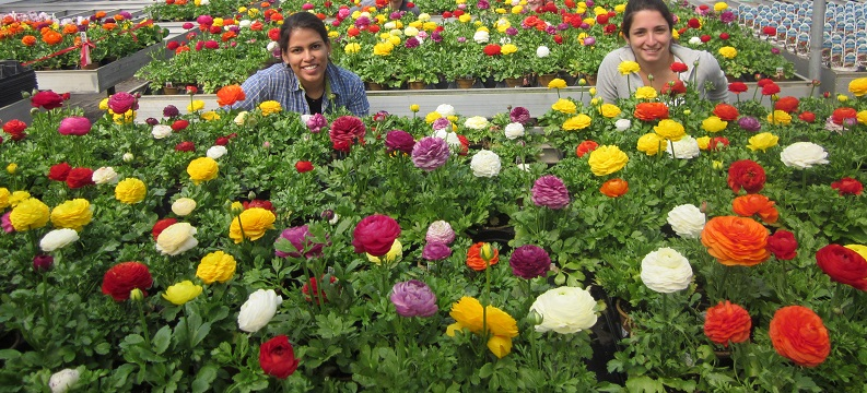 The Garden Center is Open, and that means spring is coming…really!