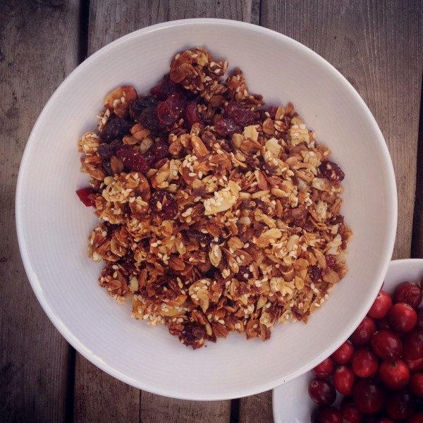 Farm Made Cranberry Granola