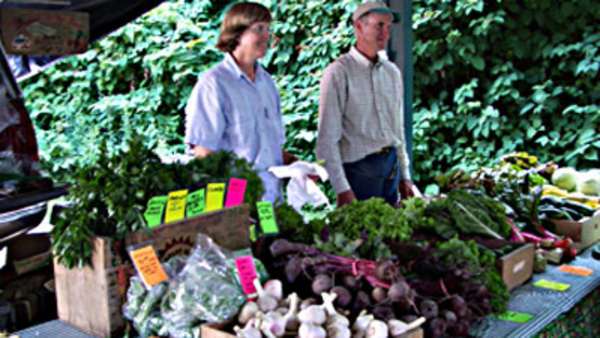 Farm Talk-Sustainable Nantucket's Successful Small Farmers Series