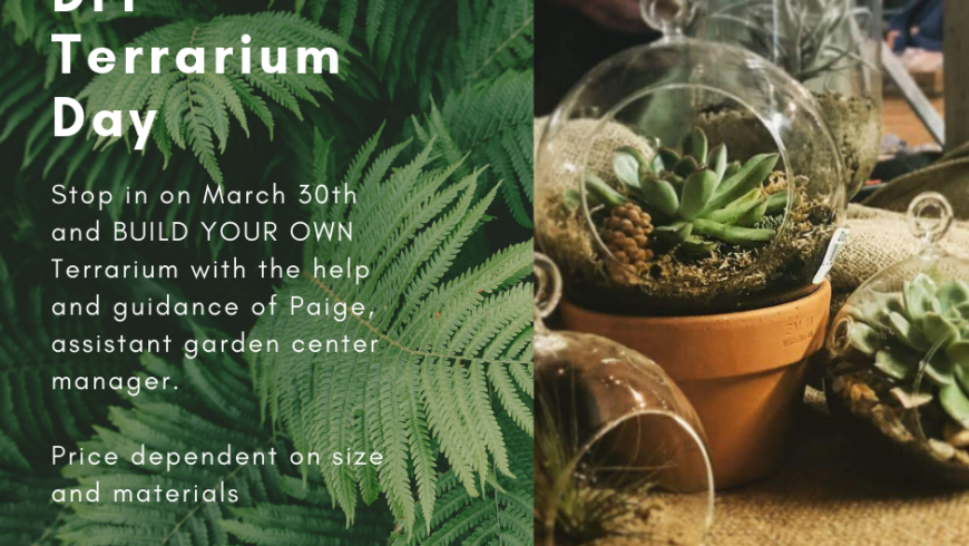 DIY Terrarium Workshop at Bartlett's Farm