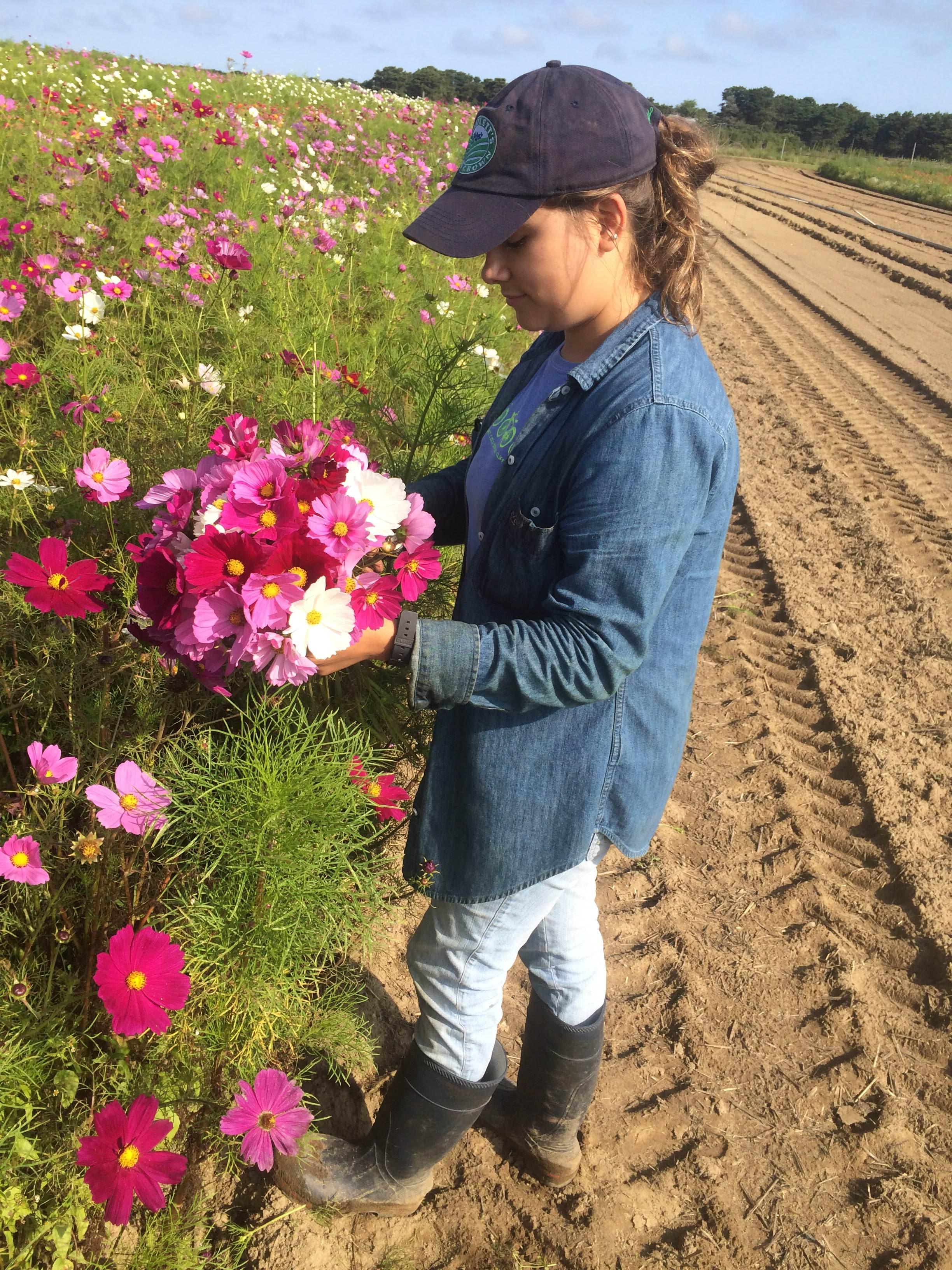 s, nunez flowers