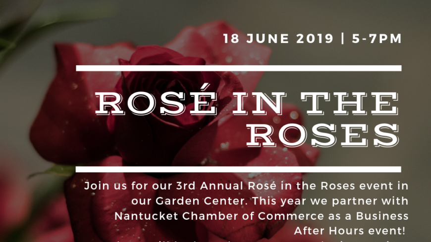 Rosé in the Roses; Business After Hours with Nantucket Chamber of Commerce