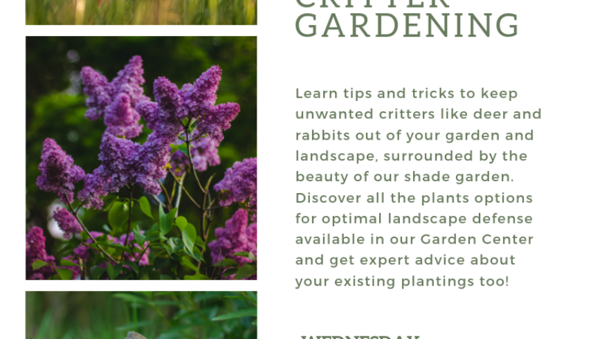 Summer Farm Talk Series; Critter Gardening