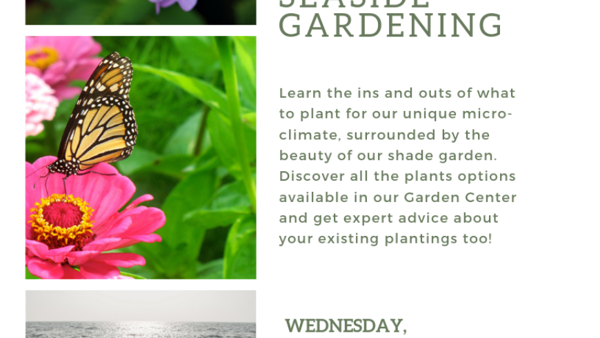 Summer Farm Talk Series; Seaside Gardening